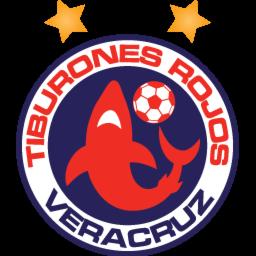 Foto del escudo de veracruz 60